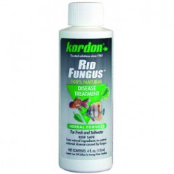 LFA085-ALL-Stained Glass-2 Daisy-4in